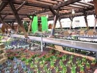 1. April 2017: Eröffnung der 1. Hallenschau - Gärtner/Helfer im Garten- und Landschaftsbau – ein Beruf stellt sich vor