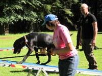 10. Juni 2017: Club P20 besucht Rettungshundestaffel