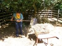 1. Mai 2018: Tagesförderstätte Kibo - Arbeiten auf dem Bauernhof