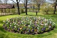 26. April 2021: Die Gartenschau lädt wieder ein