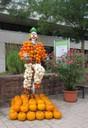 Clown auf Einrad