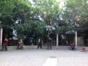 Tänzer aus Zypern