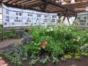 mit Schmetterlingsausstellung